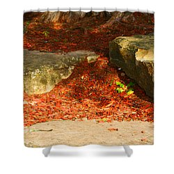 Nome Land Shower Curtain by Jamie Lynn