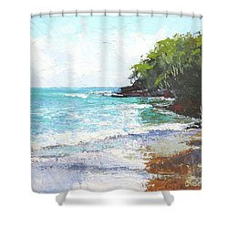 Noosa Heads Main Beach Queensland Australia Shower Curtain