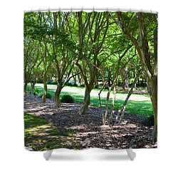Shower Curtain featuring the painting Norfolk Botanical Garden 3 by Lanjee Chee