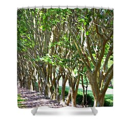 Norfolk Botanical Garden 5 Shower Curtain by Lanjee Chee
