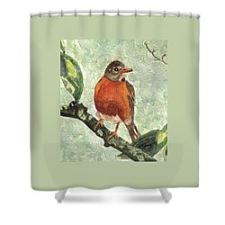 North American Robin Shower Curtain by Angela Davies