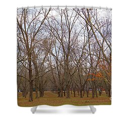 North Florida Orchard In Fall Shower Curtain