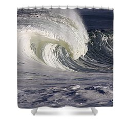 North Shore Wave Curl Shower Curtain by Vince Cavataio