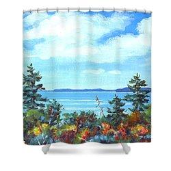 North Sky Sketch Shower Curtain by Richard De Wolfe