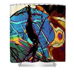 Rock Tortoise Shower Curtain