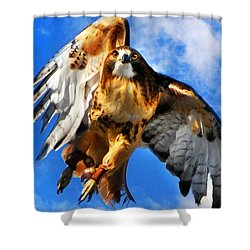 North Wind Shower Curtain by Christina Rollo