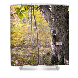 North Woods Guardian Shower Curtain by Mary Lee Dereske