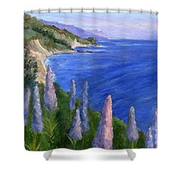 Northern California Cliffs Shower Curtain