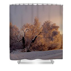 Shower Curtain featuring the photograph Northern Light by Jeremy Rhoades