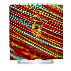 Northern Lights Shower Curtain by Omaste Witkowski