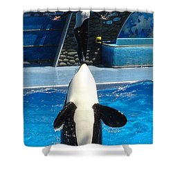 Shower Curtain featuring the photograph Nose Dive by David Nicholls