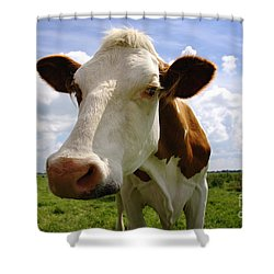 Nosy Cow Shower Curtain