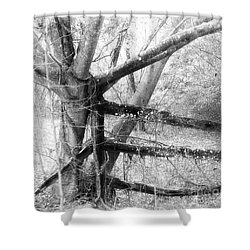 Not So Long Ago Shower Curtain
