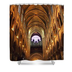 Notre Dame Ceiling Shower Curtain