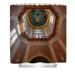 Notre Dame Ceiling Shower Curtain by Dan Sproul
