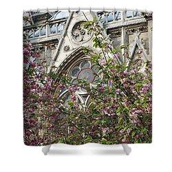 Notre Dame In April Shower Curtain by Jennifer Ancker