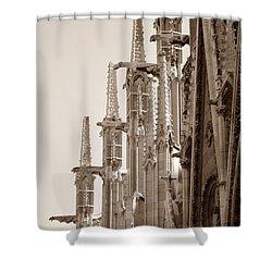 Notre Dame Sentries Sepia Shower Curtain