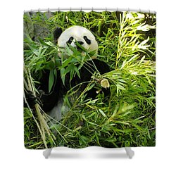 Now Thats A Mouthfull Shower Curtain by John  Greaves