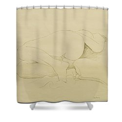 Nude Study Shower Curtain by Don Perino