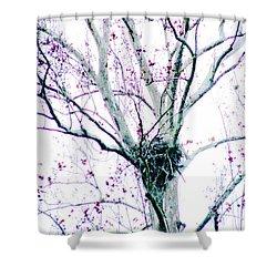 Shower Curtain featuring the digital art Nursery by Lizi Beard-Ward