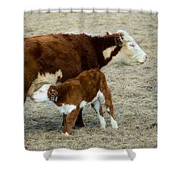 Nursing Calf Shower Curtain