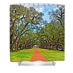 Oak Alley 3 Oil Shower Curtain by Steve Harrington