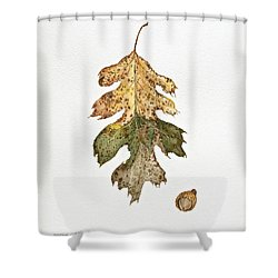 Shower Curtain featuring the painting Oak Study by Michele Myers