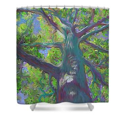 Oak Tree 1 Shower Curtain