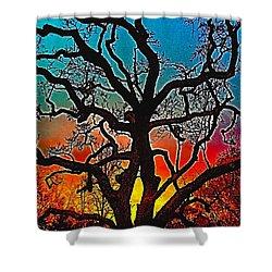 Oaks 1 Shower Curtain by Pamela Cooper