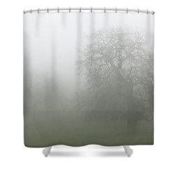 Shower Curtain featuring the photograph Oaks In Fog - Central California by Ram Vasudev