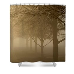Shower Curtain featuring the photograph Oaks In The Fog by Greg Simmons