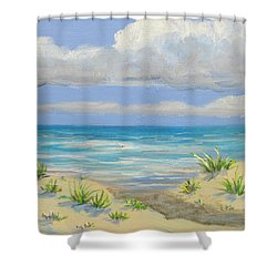 Obx Dune Shower Curtain by Anne Marie Brown