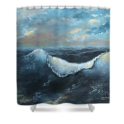 Ocean At Sunset Shower Curtain