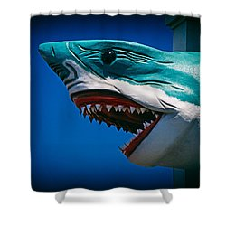 Ocean City Shark Attack Shower Curtain