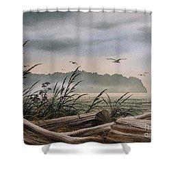 Ocean Shore Shower Curtain by James Williamson