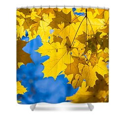 October Blues 8 - Square Shower Curtain