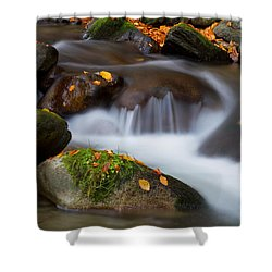 October Detail Shower Curtain by Mircea Costina Photography