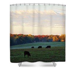 October Morning Shower Curtain