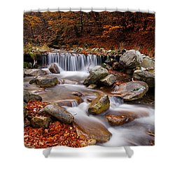 October Stream Shower Curtain by Mircea Costina Photography