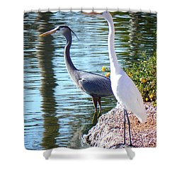 Shower Curtain featuring the photograph Odd Couple by Deb Halloran
