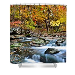 Odd Shape Shower Curtain by Frozen in Time Fine Art Photography