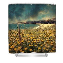 Ode To Melancholy Shower Curtain by Taylan Apukovska