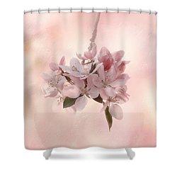 Ode To Spring Shower Curtain by Kim Hojnacki