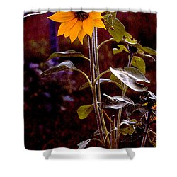 Ode To Sunflowers Shower Curtain by Patricia Keller