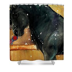 Of Girls And Horses Sold Shower Curtain by Lil Taylor