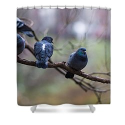 Of The Personal Opinion - Featured 3 Shower Curtain by Alexander Senin