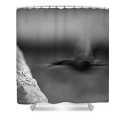 Off.. Shower Curtain