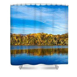 Ogden Shower Curtain