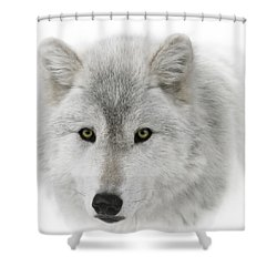 Oh Those Eyes Shower Curtain