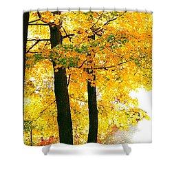 Ohio Autumn Shower Curtain